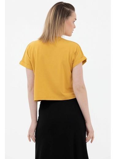 Sementa Baskılı Basic Kısa Tshirt - Hardal Hardal